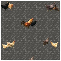 Helen's Yard-Chicken Printed Wallpaper in Charcoal