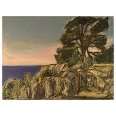 Helge Franzén, Swedish Artist, Coastal Landscape with Rocks