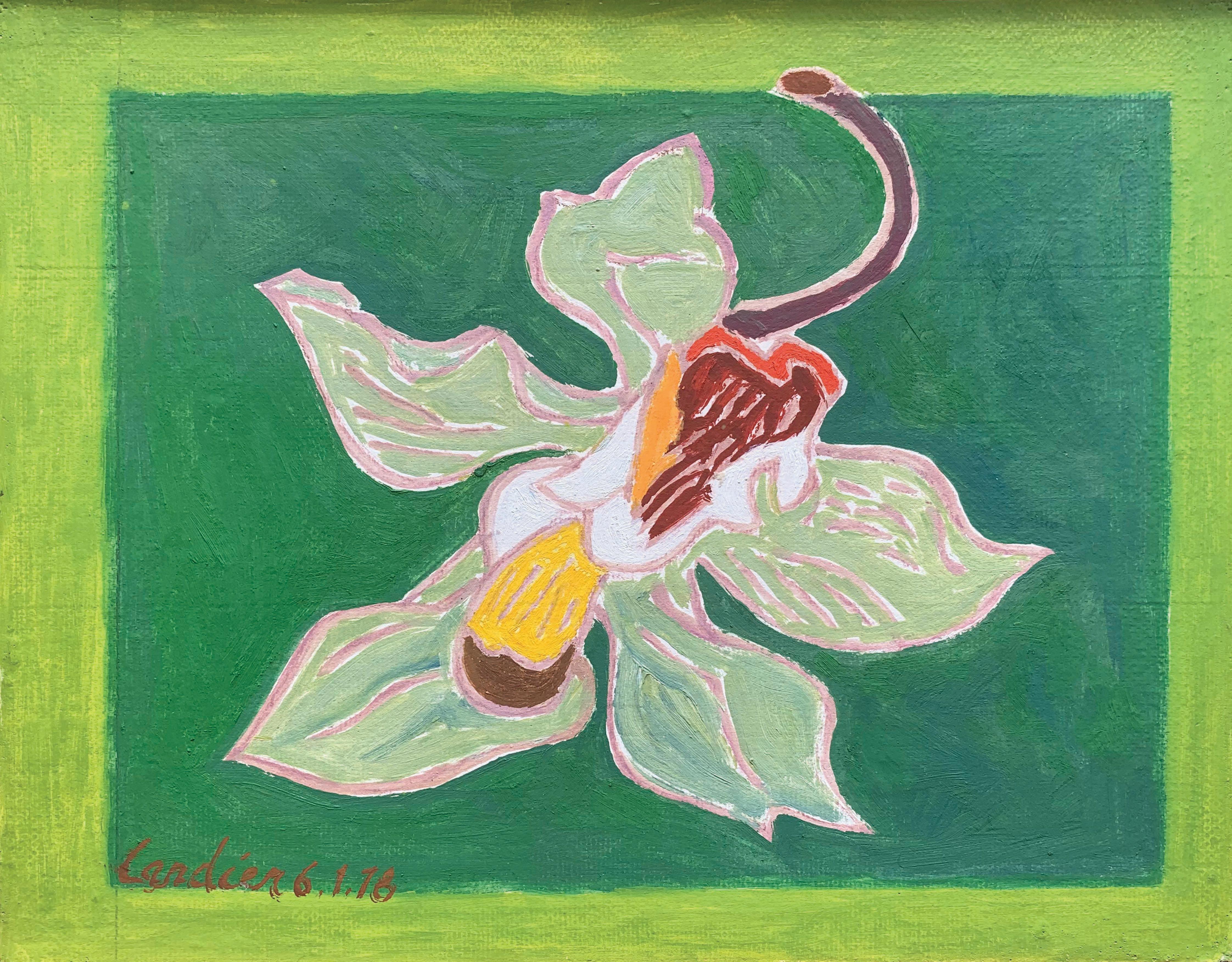 L'orchidee Verte