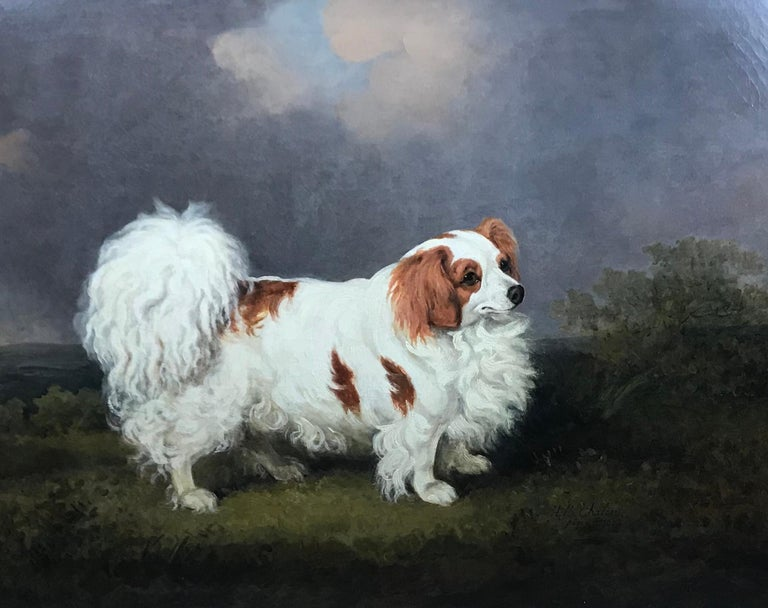 "Henry Bernard Chalon 1770-1849 ""Carlo"" a portrait of a famous spaniel, the property of Mrs Kennedy, 1807 Signed and dated 1807 Oil on canvas 71.1 x 91.4 cm 28 x 36 in"