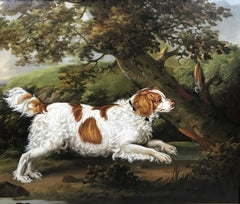 """Quaile"", an English spaniel in a wooded landscape"