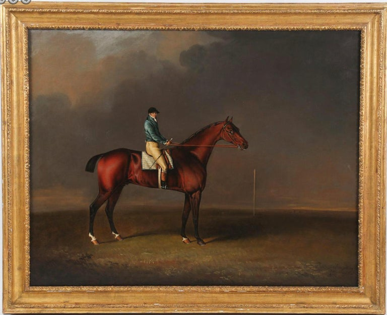 Sir David, a Bay Racehorse owned by H. R. H. The Prince of Wales For Sale 2
