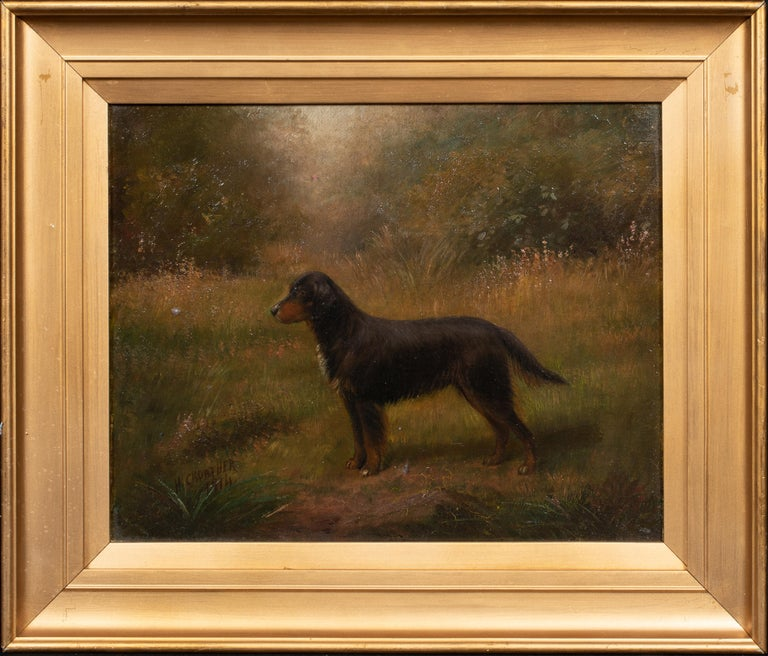 Portrait Of A Gordon Setter, dated 1914 - Painting by Henry Crowther