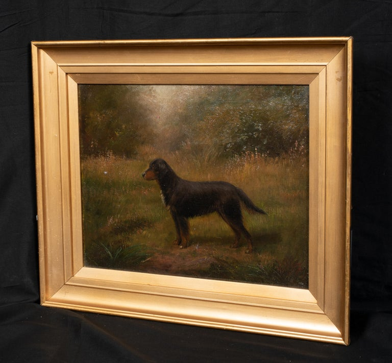 Portrait Of A Gordon Setter, dated 1914  by Henry Crowther (1905-1939) - Proflific British Dog Painter  1914 English portrait of a Gordon Setter, oil on canvas by Henry Crowther. Good quality and condition side profile study and rare early depiction