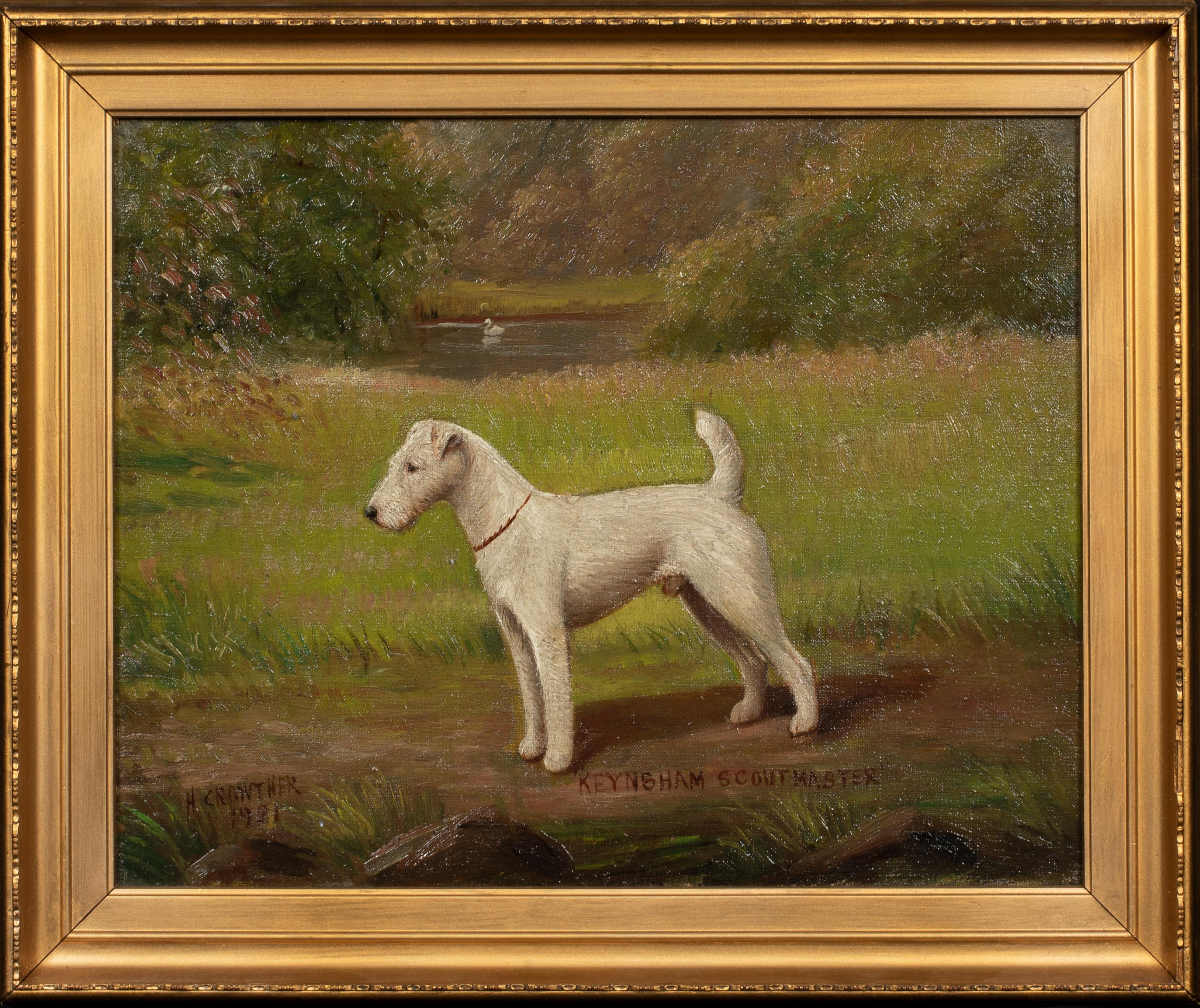 Portrait of 'Keynsham Scoutmaster', a Wire-haired Fox Terrier, circa 1900