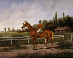 Chestnut Racehorse with a Jockey Up On a Training Strap