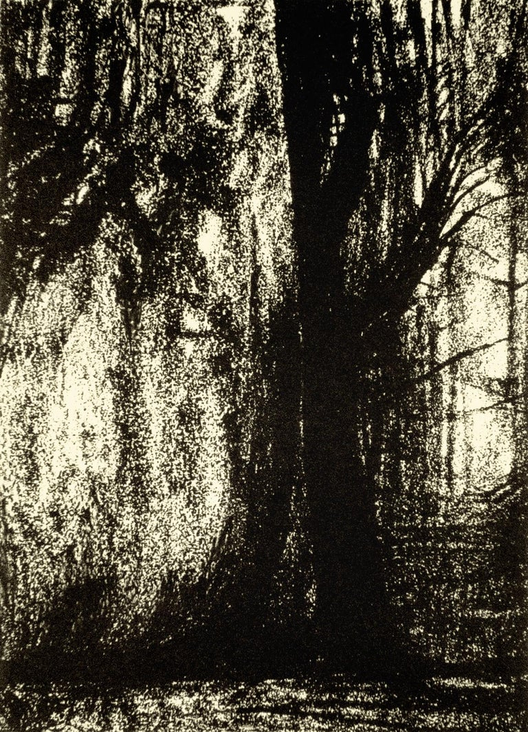 The Forest - Print by Henry Moore