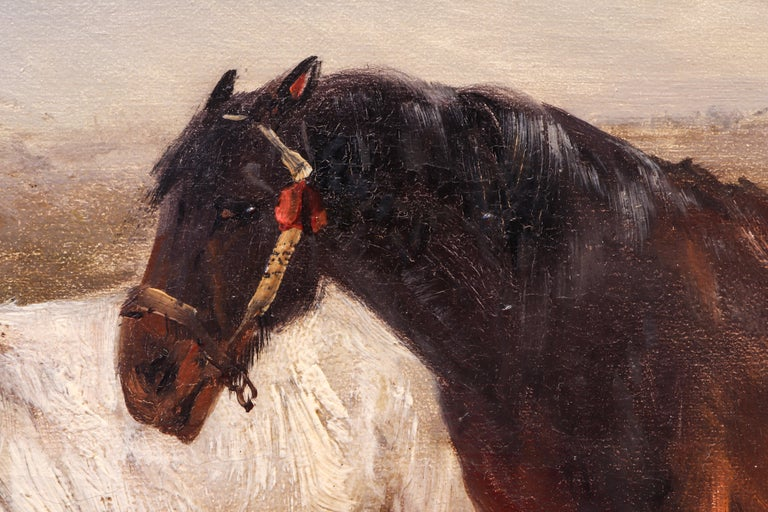 Belgian Henry Schoute, Horses in a Field, Late 19th Century, Oil on Canvas For Sale
