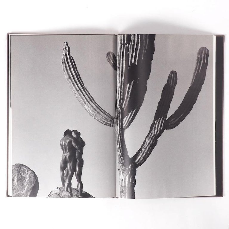 American Herb Ritts Duo First Edition 1991 For Sale
