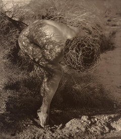 Male Nude with Thorns, Joshua Tree