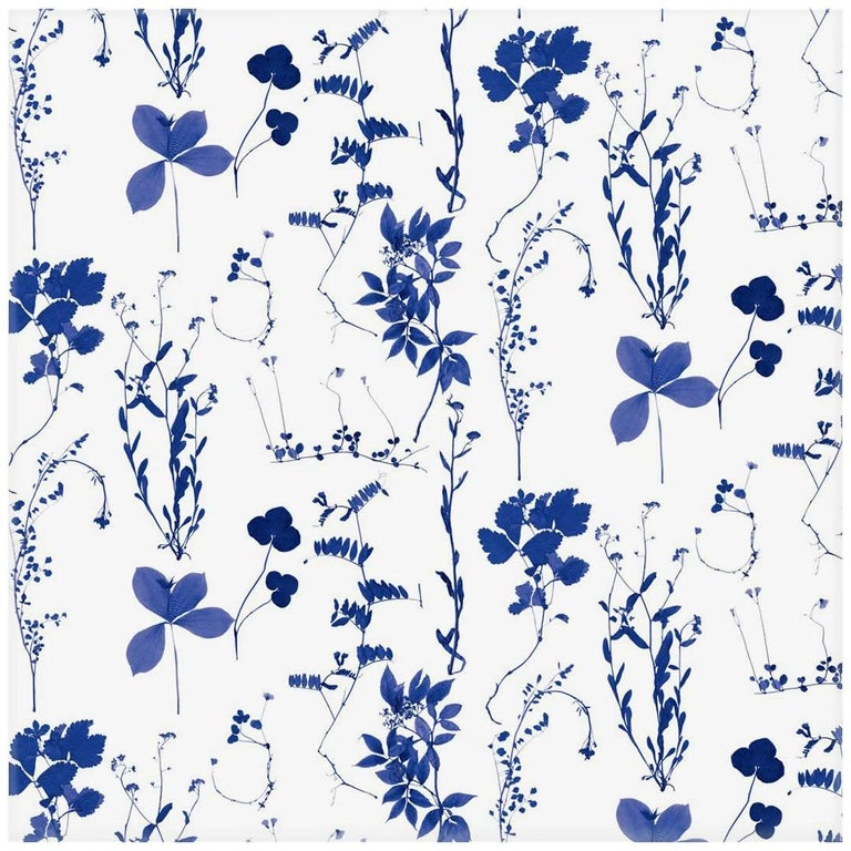 Herbario Designer Wallpaper In Color Royal Multi Color Bluescobalt