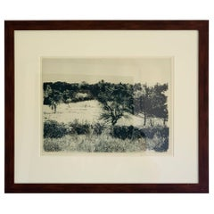 "Herbert Fink, ""Annies Garden, Etching"" on Paper, 1979"