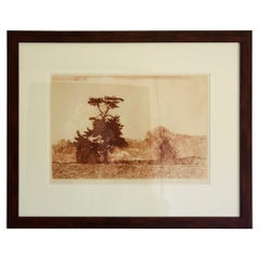 Herbert Fink, Lonesome Pine, Etching on Paper, 1979