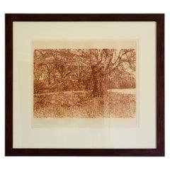 Herbert Fink, Shadow of an Elko, Etching on Paper, 1979