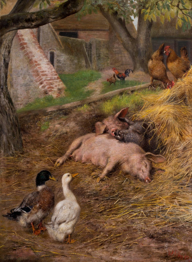 Pigs slumbering amongst ducks and chickens For Sale 2
