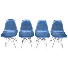 Herman Miller Eames Fiberglass DSR Dining Chairs in Navy Blue