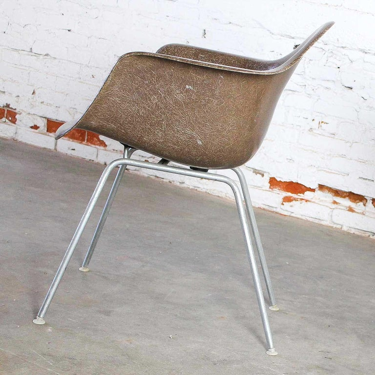 Herman Miller Eames Molded Fiberglass DAX Shell Arm Chair  H Base in Seal Brown For Sale 4