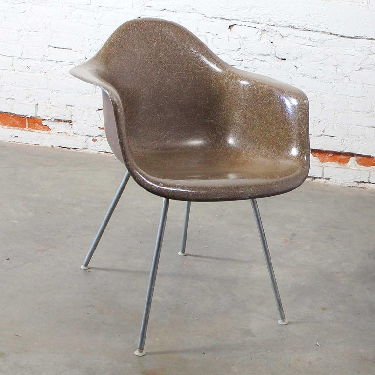 20th Century Herman Miller Eames Molded Fiberglass DAX Shell Arm Chair  H Base in Seal Brown For Sale