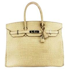 Hermès 2010 Birkin 35cm Matte Niloticus Crocodile Leather Bag