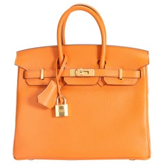 Hermès Abricot Novillo Leather Birkin 25 with Gold Hardware