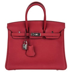 Hermes Birkin 25 Bag Exotic Jewel Red Rouge Grenat Togo Palladium
