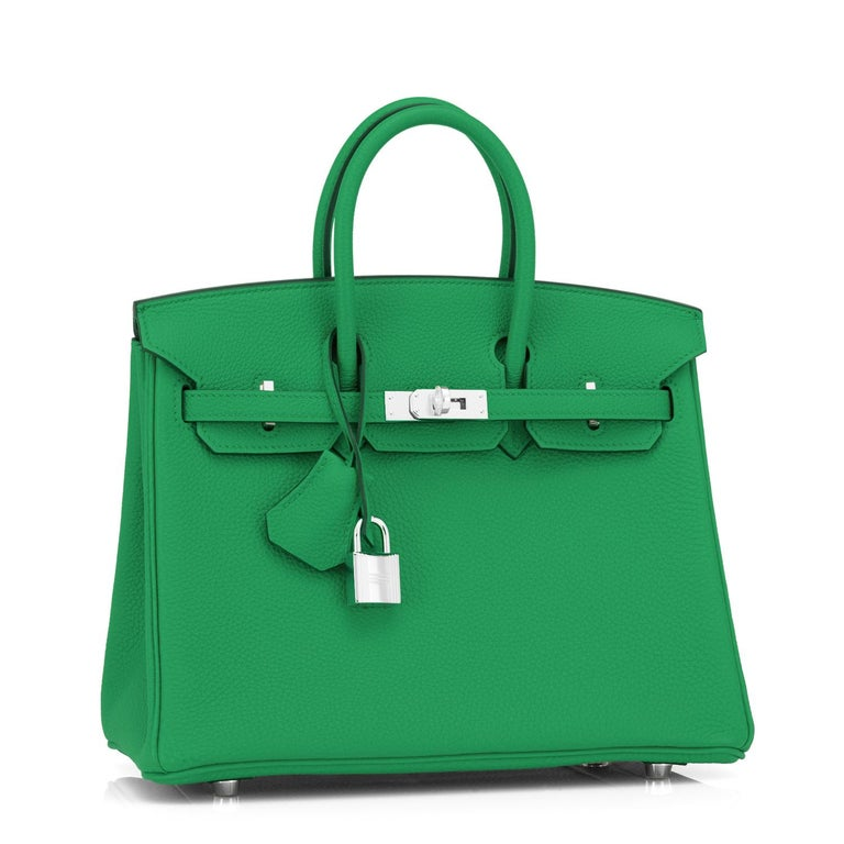 Women's Hermes Birkin 25 Bambou Green Verso Caramel Bamboo Togo Bag Y Stamp, 2020 For Sale