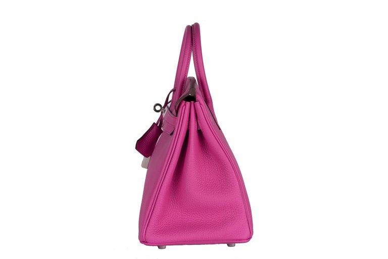 Hermes Birkin 25 Magnolia Togo Palladium Bag For Sale 5