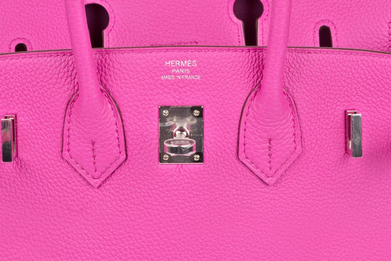 Hermes Birkin 25 Magnolia Togo Palladium Bag For Sale 6