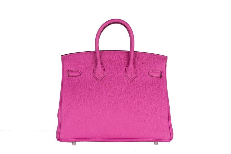 Hermes Birkin 25 Magnolia Togo Palladium Bag For Sale 7