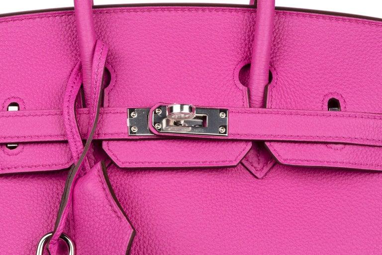 Hermes Birkin 25 Magnolia Togo Palladium Bag For Sale 9