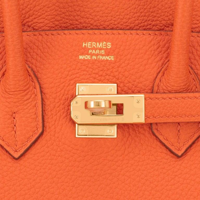 Hermes Birkin 25 Orange Feu Togo Bag Gold Jewel Y Stamp, 2020 5