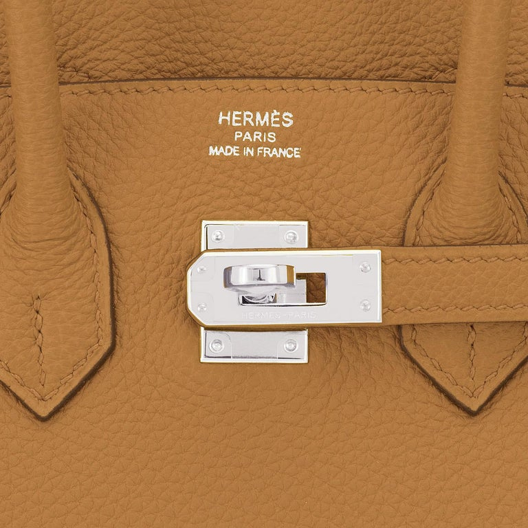 Hermes Birkin 25cm Bronze Dore Togo Gold Tan Bag Palladium Bag Y Stamp, 2020 For Sale 5