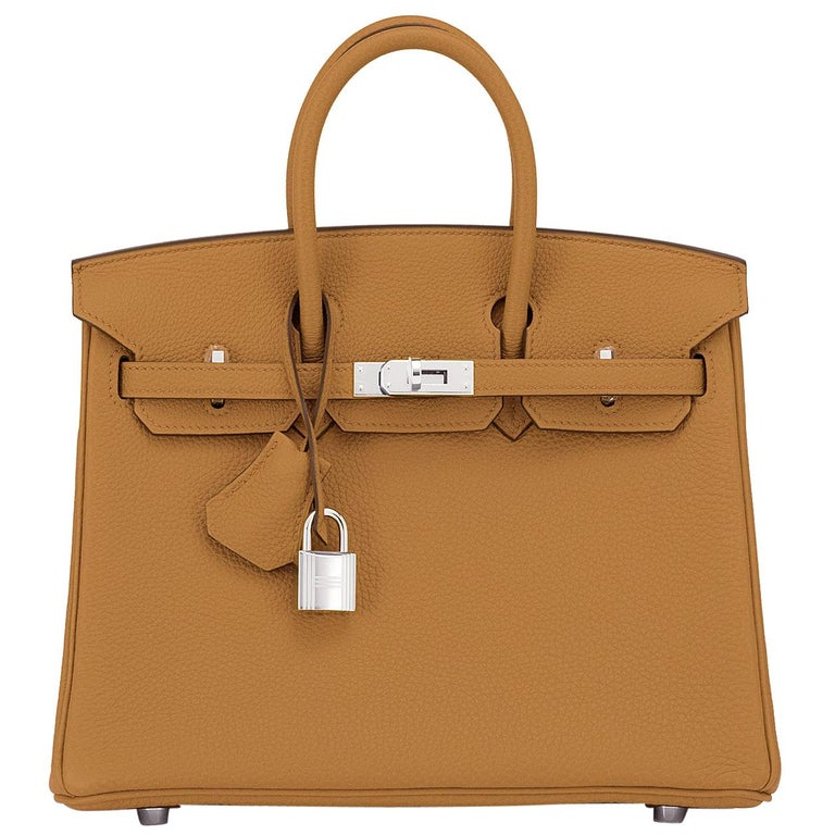 Hermes Birkin 25cm Bronze Dore Togo Gold Tan Bag Palladium Bag Y Stamp, 2020 For Sale