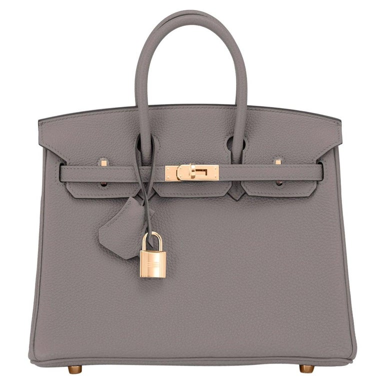 Hermes Birkin 25cm Etain Tin Grey Rose Gold Hardware Bag Z Stamp, 2021 For Sale