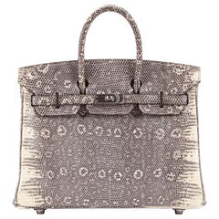 Hermes Birkin 25cm Ombré Lizard with Palladium hardware