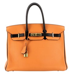 Hermes Birkin Handbag Bicolor Clemence With Gold Hardware 35