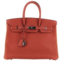 Hermes Birkin Handbag Bicolor Togo with Ruthenium Hardware 35