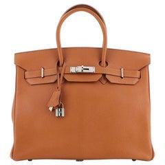 Hermes Birkin Handbag Potiron Chevre de Coromandel with Palladium Hardwar