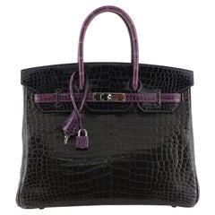 Hermes Birkin Handbag Tricolor Shiny Porosus Crocodile with Palladium Hardware 3