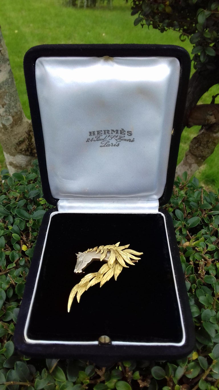 Hermès Brooch In Grey and Yellow Gold Horse Head Numbered Extremely Rare For Sale 11