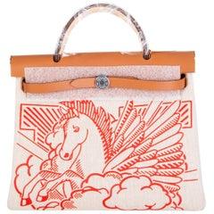 HERMES Capucine red PEGASE POP HERBAG ZIP 31 RETOURNE Bag Hunter / Toile H