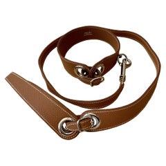 Hermès Collar and Leash Set for Pet Dog