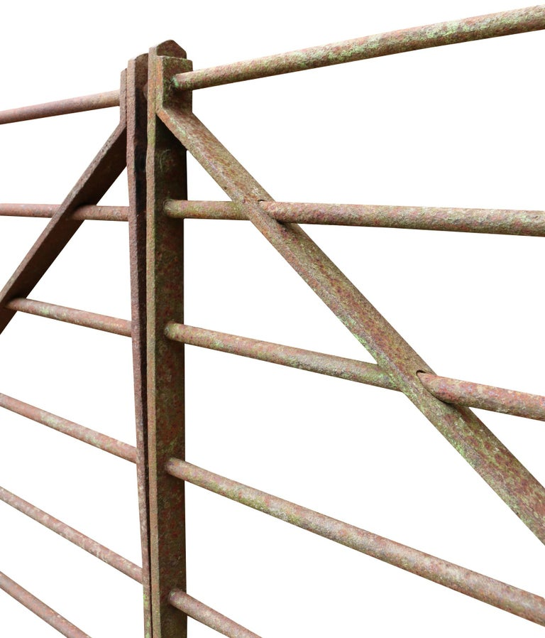Georgian Pair of Early 20th Century Wrought Iron Cattle Gates For Sale