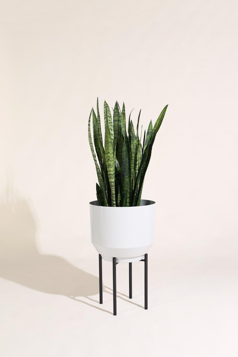 Modern Planter Stand, Black For Sale