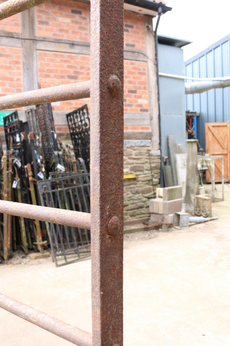 English Pair of Early 20th Century Wrought Iron Cattle Gates For Sale