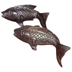 Bronze Goldfish from Indonesia