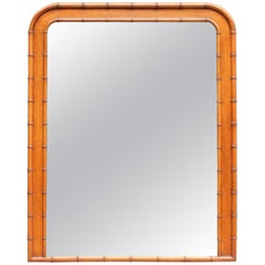 French Napoleon II Faux Bamboo and Mahogany Framed Mirror