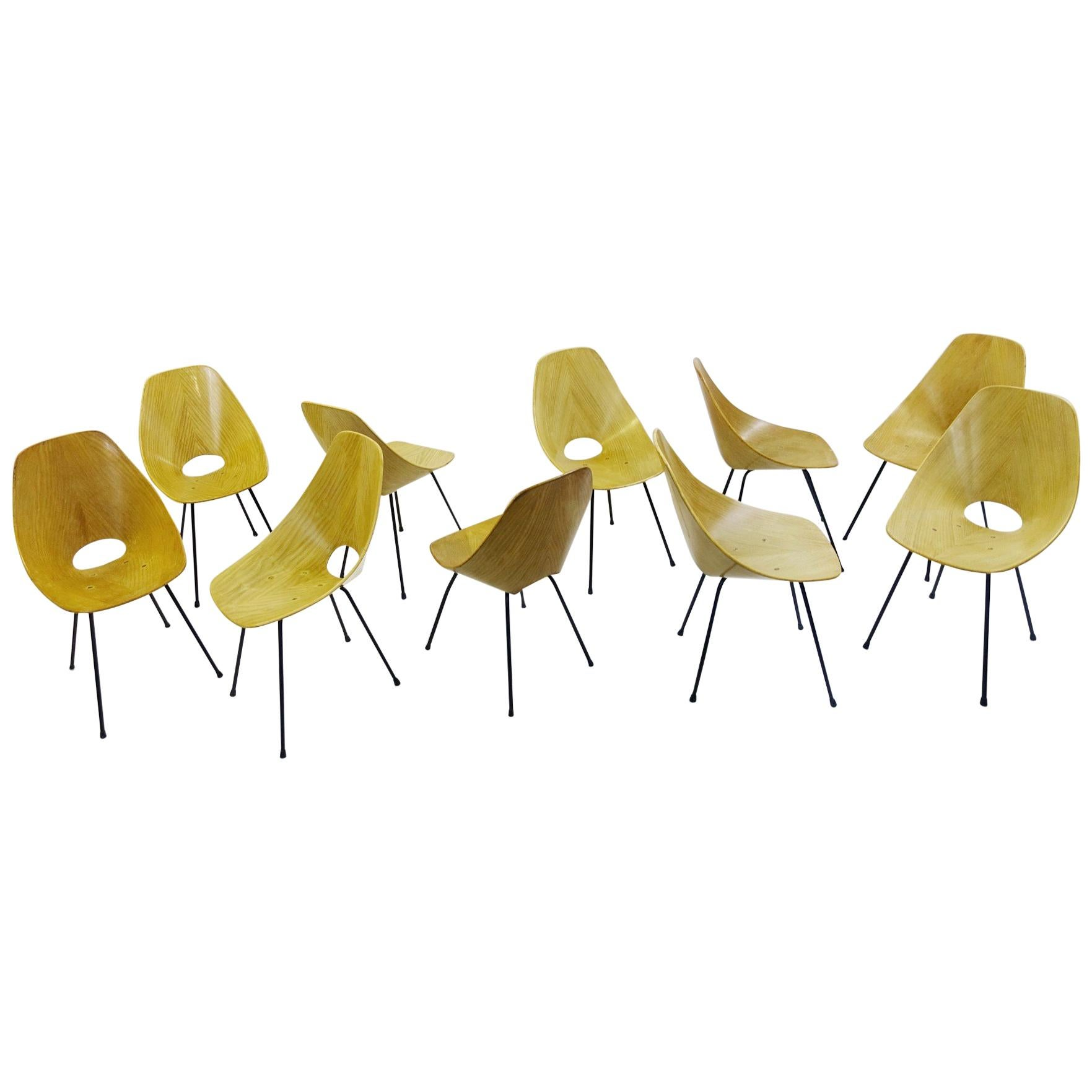 Set of Ten Medea Dining Chairs in Ash by Vittorio Nobili for Tagliabue, 1950s