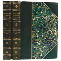 American Commonwealths, New York in Two Volumes
