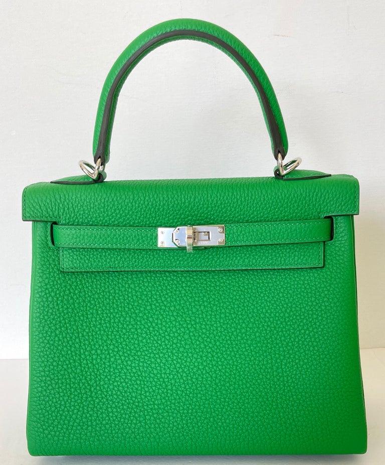 Women's or Men's Hermes Kelly 25 Bamboo Bag Togo Palladium For Sale